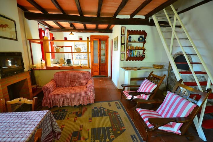 Bright Holiday Home in San Marcello with Pool near Meadows