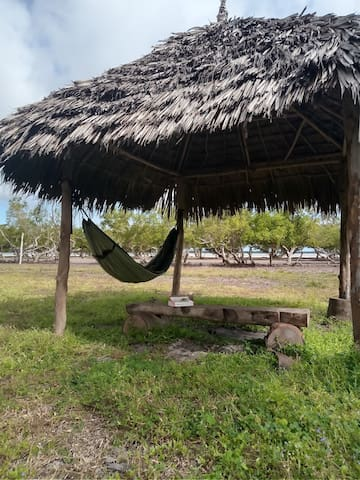 Avian leisure camp,the ultimate birding base