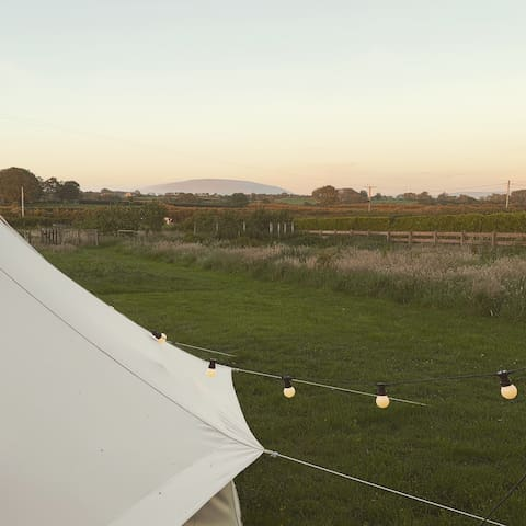The Glamping Space