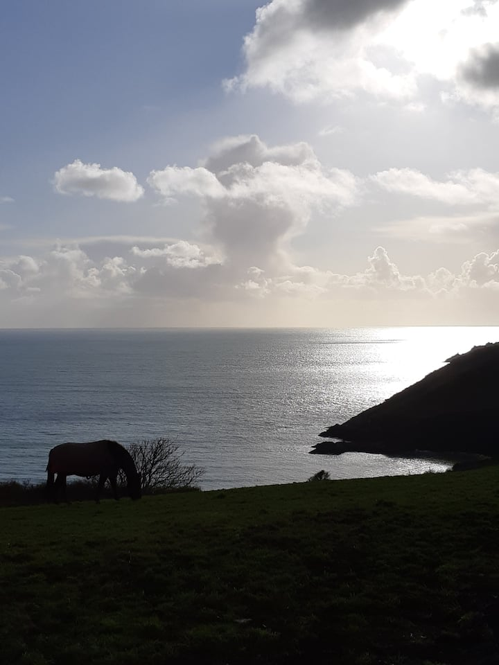 Camels Cottage; Easy access to Cornish Coastpath