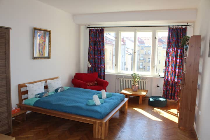 Colorful and spacious studio close to city center