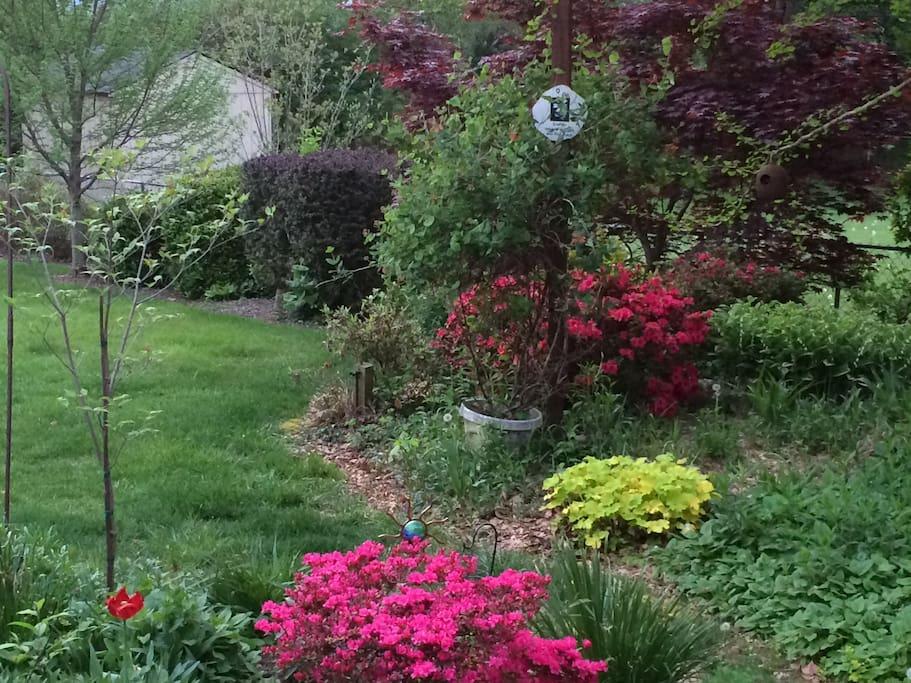 Springtime in Louisville