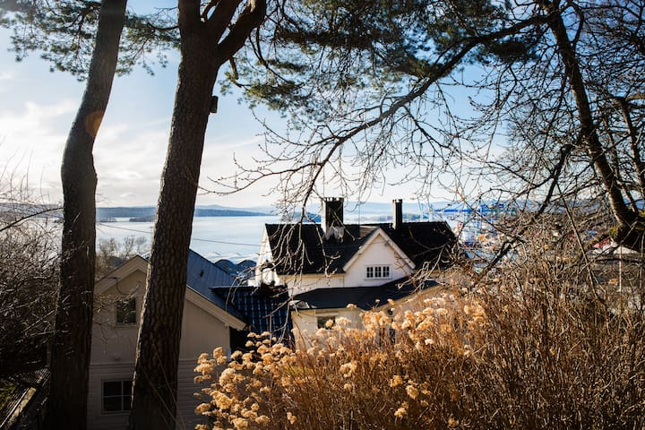 10 min to Oslo Central Station, Garden Fjord view