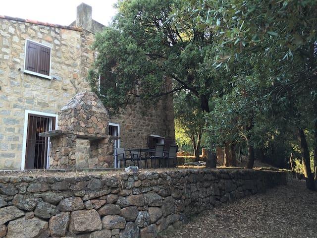 Vieux Mas entre mer et montagne - Olmeto - House