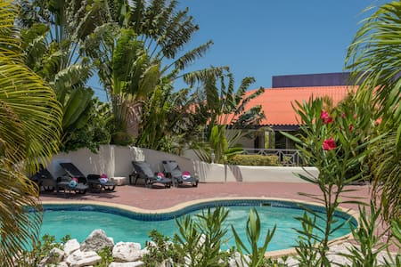 Modern Apartments with pool near Mambo beach