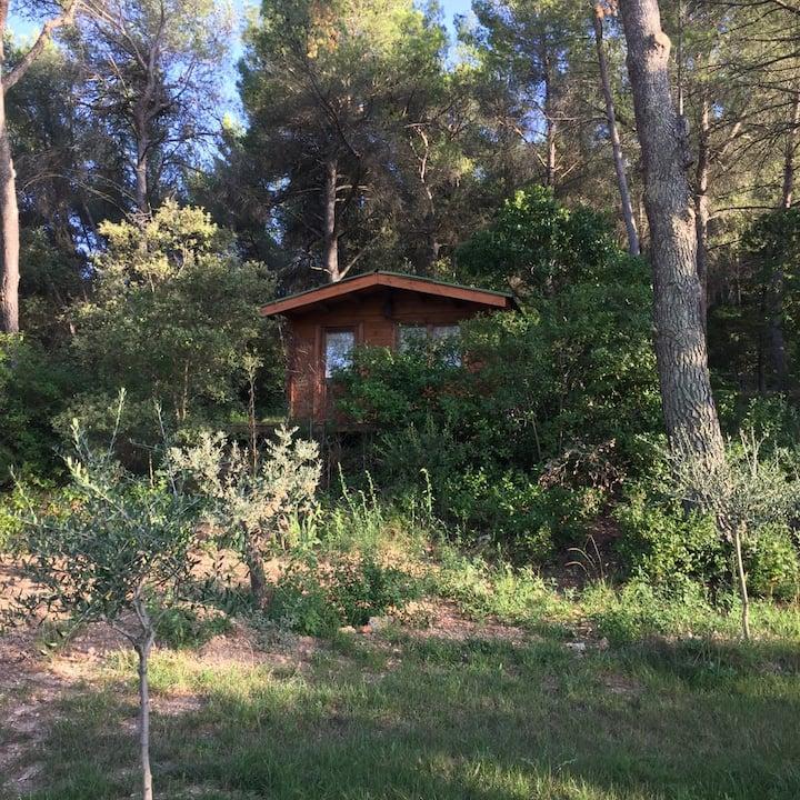 Cabane au coeur de la forêt.