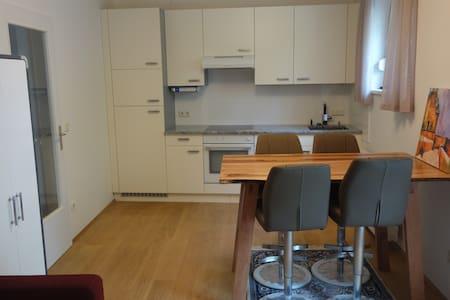 Komplett renovierte Wohnung in Graz-St.Peter - Грац