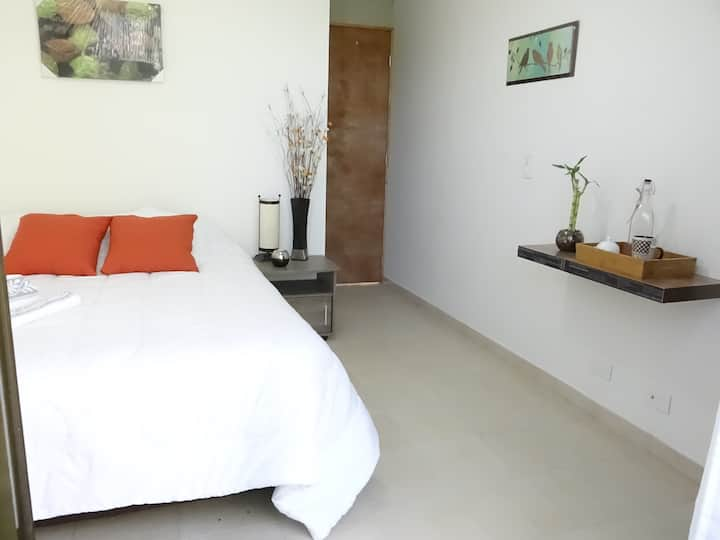 Poblado Room /special offer full month