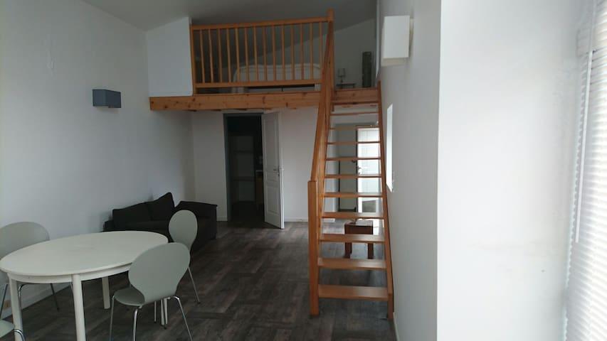 Studio duplex refait à neuf - Salies-de-Béarn - Apartamento