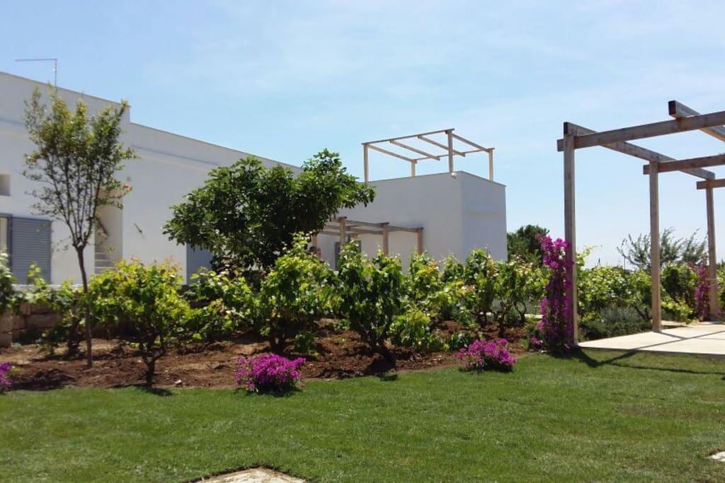 Il Casale e il giardino