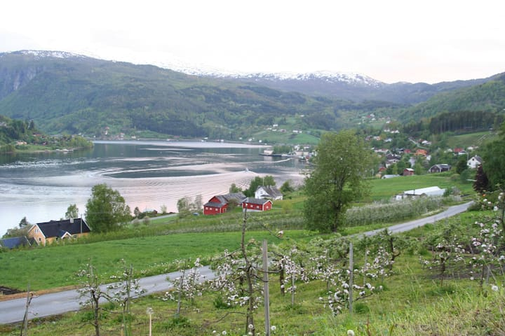 Farm house with a stunning fjord view