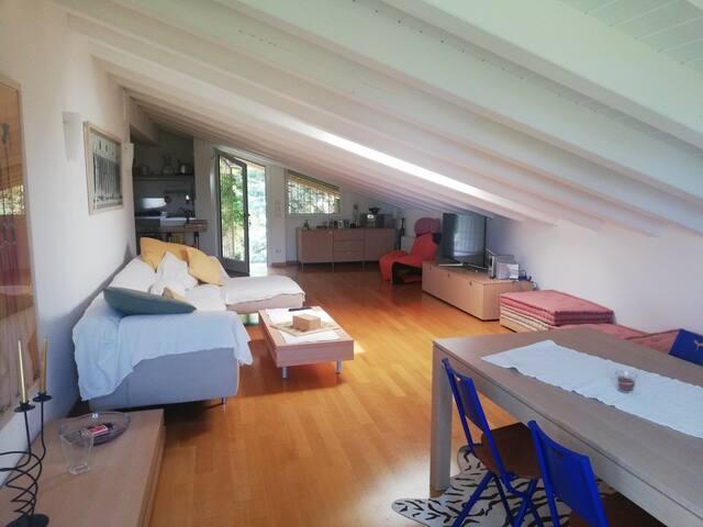 living room  soggiorno