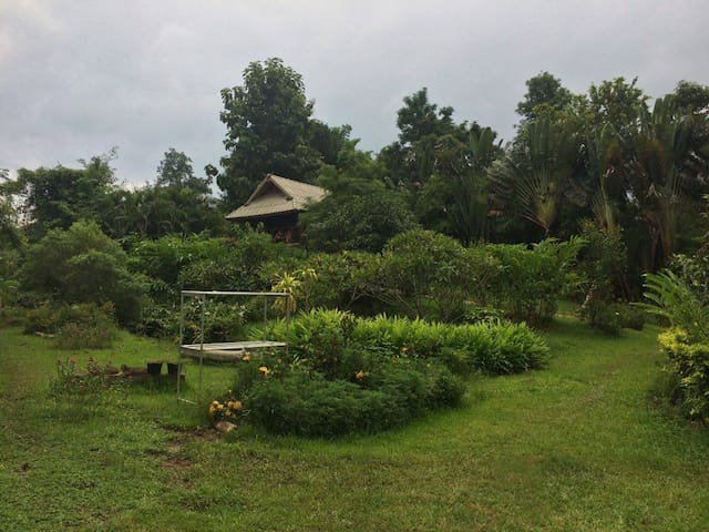 Lush green and quiet retreat.. - Mae Na Toeng