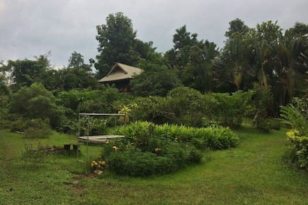 Lush green and quiet retreat.. - Mae Na Toeng - Rumah