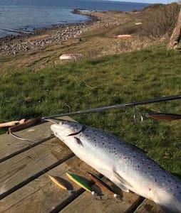 Angler's hotspot direct on Fjord/ Havørred hotspot
