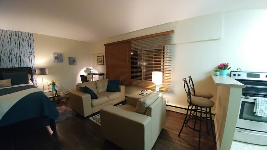 Bright Studio Condo Near Seine River