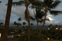 evening view from condo