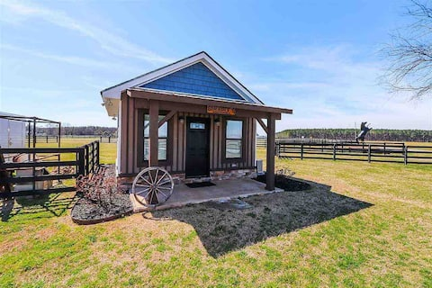 Light and Bright Tiny House - Close to DT Perry