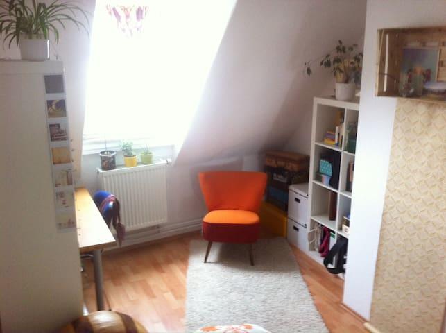 Gemütliches Zimmer in der Neustadt - Mainz - Apartment