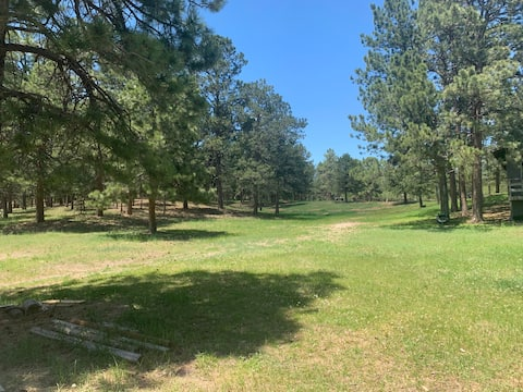 Ranch in the Pines,4+ acres (Black Forest)