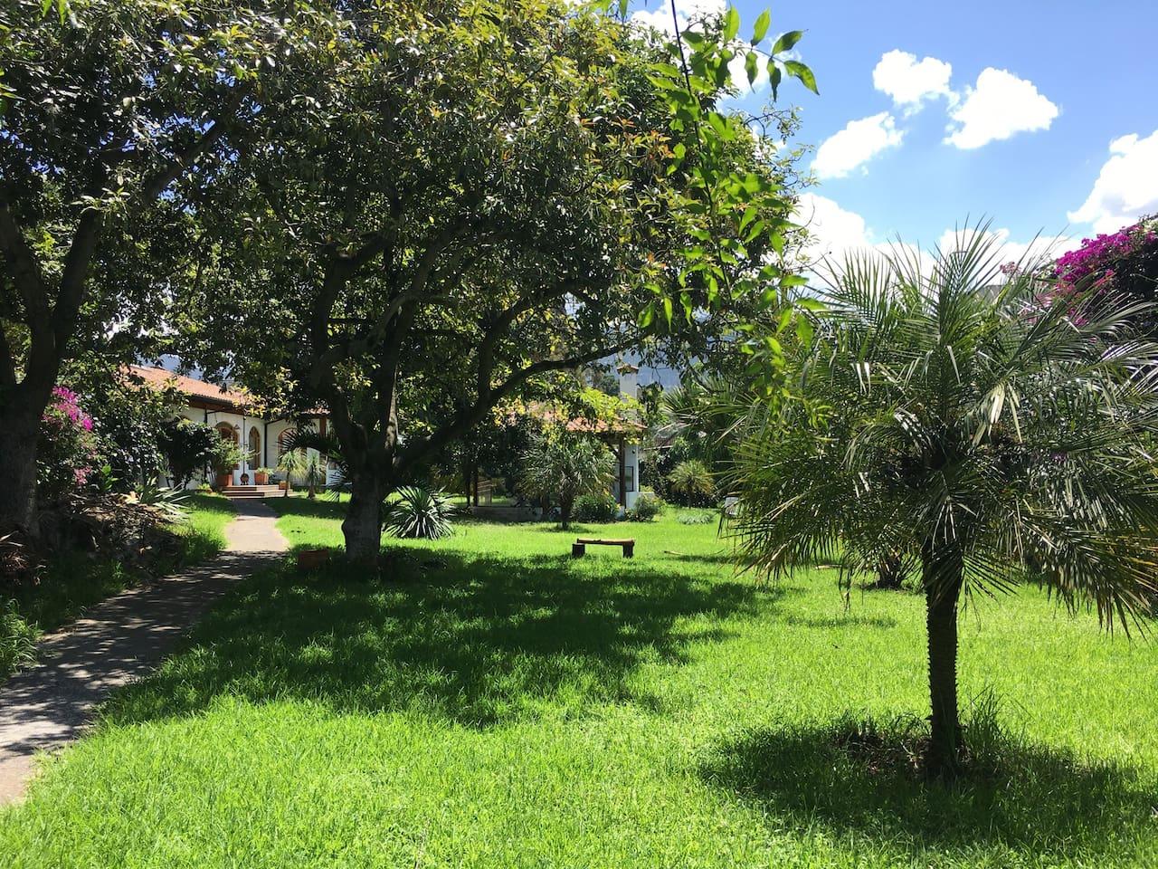 Gran espacio verde para tu relax!