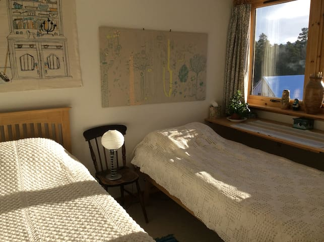 Bright, south facing bedroom, 2 single beds, can be made into a double,  Single occupancy can move 1 bed under the other for extra space