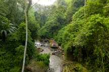 In one word: WOW! I have had a fantastic, amazing, more than words can say time at the river villa.....Unbelievable that Ubud center is only minutes (drive) away!  Kris, Holland On-Line Airbnb Review