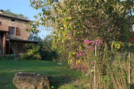 Cottage Casa Parlatino - Zocca