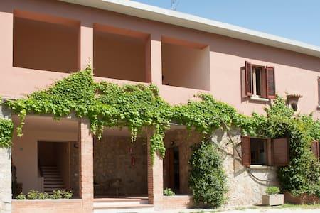 STACCA LA SPINA: tutta l'Umbria ai tuoi piedi1 - Marsciano - Apartment