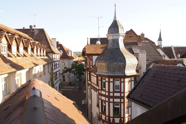 Loft in the center of Radolfzell