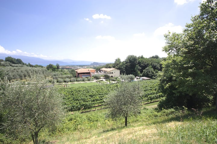 Residence Garda Valtenesi 6 - Relax and  lake view
