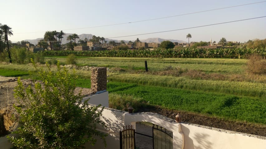 Scenic views, West Bank Luxor - Луксор - Квартира