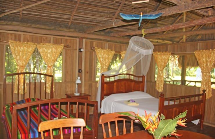 Villa Parrot inside