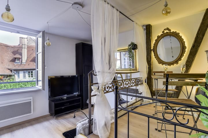 CHARMING STUDIO IN THE HEART OF PETITE FRANCE IN STRASBOURG FOR TWO PEOPLE