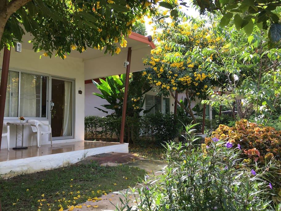 บ้านพักล้อมรอบไปด้วยต้นไม้