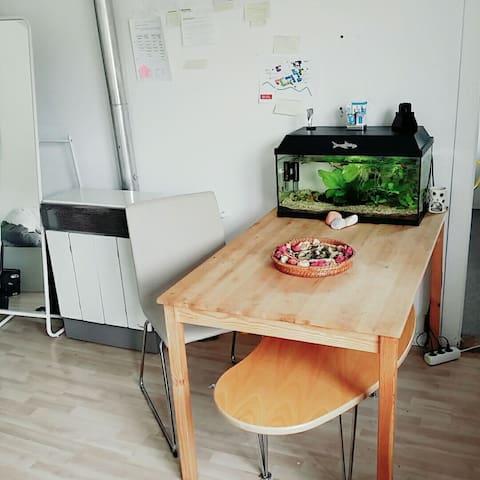 Gemütliche Wohnung im Zentrum - Braunschweig - Departamento