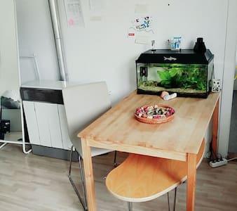 Gemütliche Wohnung im Zentrum - Braunschweig - Huoneisto