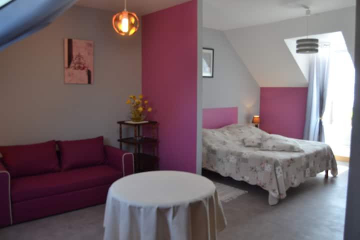 belle chambre confortable et spacieuse