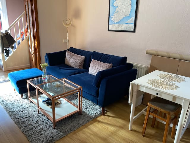 Cosy Home in the Heart of Dublin
