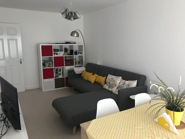 Modern flat close to the centre with bicycles