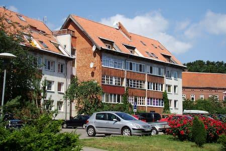 Apartamentai Dorė - Nida - Apartment
