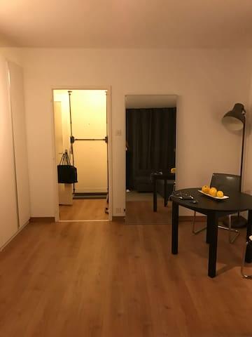 Studio en centre ville - Genève - Apartment