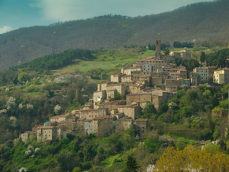 cecina singles Hotel - ristorante il settebello: highlights of tuscany - see 167 traveler reviews, 49 candid photos, and great deals for hotel.