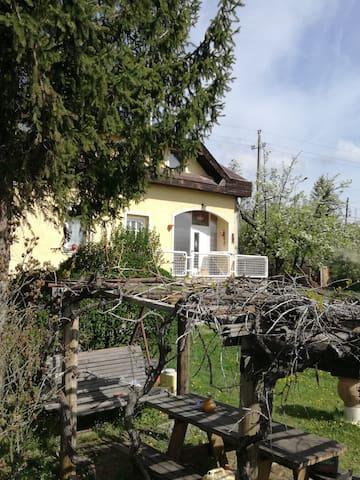 Fazekasház - Budaörs - House