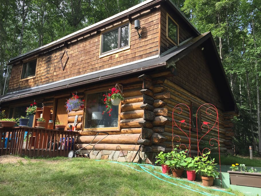 Log House in Birch Woods with summer flowers