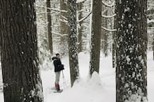 Snowshoeing is close by