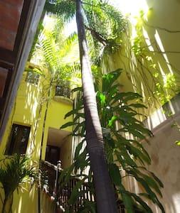 Patio Garden Suite - 聖胡安