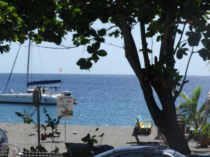 L'AMANDIER ROSE T3 paisible et cosy face à la mer