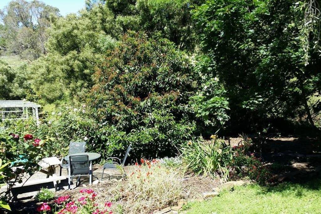 Quiet garden nook.