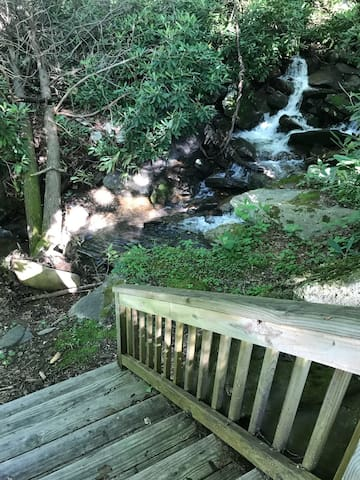 steps directly from deck to a running stream. We've found craw fish and an actual trout.